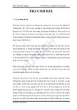 Luận văn:Phân tích tình hình tài chính tại Cty CP Cơ khí xây dựng Công trình 623