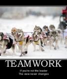 """""""Am hiểu"""" hơn về teamwork"""