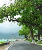 Côn Đảo – Kỳ Vĩ Và Oai Hùng