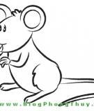 Tinh con chuột