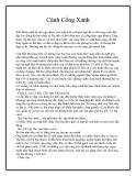 Truyện ngắn Cánh Cổng Xanh