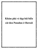 Khám phá vẻ đẹp bãi biển cát đen Punaluu ở Hawaii