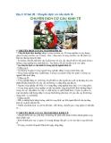 Địa lí 12 bài 20 : Chuyển dịch cơ cấu kinh tế