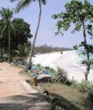 Khám phá vẻ đẹp hoang sơ của bãi biển nhiệt đới ở Kenya