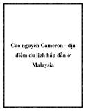 Cao nguyên Cameron - địa điểm du lịch hấp dẫn ở Malaysia