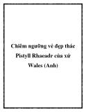 Chiêm ngưỡng vẻ đẹp thác Pistyll Rhaeadr của xứ Wales (Anh)