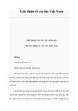 Giới thiệu về cây lúa Việt Nam