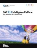 sas r 9 1 3 intelligence platform