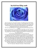 Sự tích hoa hồng xanh