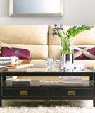 Vũ điệu quyến rũ giữa sofa và bàn cafe thiết kế nội thất