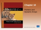 Chapter 10 Pointers and Dynamic Arrays