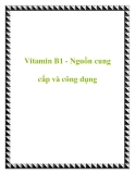 Vitamin B1 - Nguồn cung cấp và công dụng
