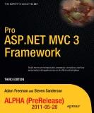 Ebook Pro ASP NET MVC3 framework