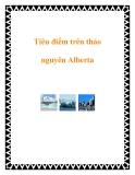 Tiêu điểm trên thảo nguyên Alberta