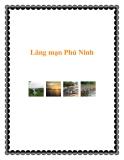 Lãng mạn Phú Ninh