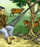 Truyện cổ tích: Sự tích Sọ Dừa