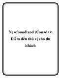 Newfoundland (Canada): Điểm đến thú vị cho du khách