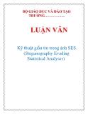 LUẬN VĂN: Kỹ thuật giấu tin trong ảnh SES (Steganography Evading Statistical Analyses)