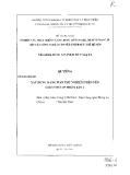Luận văn:Xây dựng mạng Wan thử nghiệm trên nền giao thức IP phiên bản 6