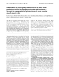 Báo cáo Y học:  Enhancement by a-tocopheryl hemisuccinate of nitric oxide production induced by lypopolysaccharide and interferon-c through the upregulation of protein kinase C in rat vascular smooth muscle cells