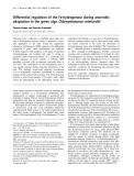 Báo cáo Y học:  Differential regulation of the Fe-hydrogenase during anaerobic adaptation in the green alga Chlamydomonas reinhardtii