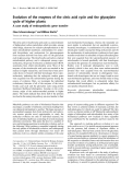 Báo cáo Y học:  Evolution of the enzymes of the citric acid cycle and the glyoxylate cycle of higher plants