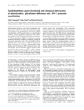 Báo cáo Y học:  Azidothymidine causes functional and structural destruction of mitochondria, glutathione deficiency and HIV-1 promoter sensitization