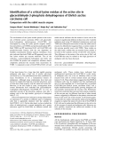 Báo cáo Y học:  Identification of a critical lysine residue at the active site in glyceraldehyde-3-phosphate dehydrogenase of Ehrlich ascites carcinoma cell