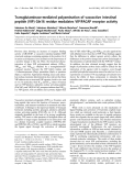 Báo cáo Y học:  Transglutaminase-mediated polyamination of vasoactive intestinal peptide (VIP) Gln16 residue modulates VIP/PACAP receptor activity