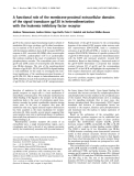 Báo cáo Y học:  A functional role of the membrane-proximal extracellular domains of the signal transducer gp130 in heterodimerization with the leukemia inhibitory factor receptor