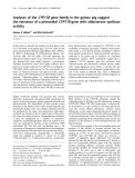 Báo cáo Y học:  Analyses of the CYP11B gene family in the guinea pig suggest the existence of a primordial CYP11B gene with aldosterone synthase activity