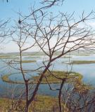 Khám phá hồ nổi Loktak ở Ấn Độ