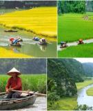 Cảnh quan thiên nhiên đẹp tuyệt vời ở Tam Cốc, Ninh Bình
