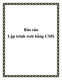 Báo cáo lập trình web bằng CMS