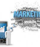 Quy trình thực hiện chiến dịch SMS Marketing trong chiến dịch Mobile Marketing tổng thể.