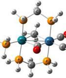 Tóm tắt lý thuyết hoá học vô cơ 10Chương 5 : NHÓM HALOGENA.
