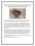 Bước đầu cho sinh sản và ương nuôi thành công ấu trùng Ba Khía (Sesarma mederi)
