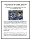Hệ thống giám sát tình hình nuôi và điều kiện phát sinh bệnh gan thận mủ trên cá tra (Pangasianodon Hypophthalmus) nuôi thâm canh tại tỉnh An Giang