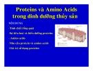 Proteins và  Amino Acids trong dinh dưỡng thủy sản