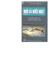 Nuôi cá nước ngọt- hỏi đáp nuôi cá trong ruộng lúa