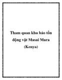 Tham quan khu bảo tồn động vật Masai Mara (Kenya)
