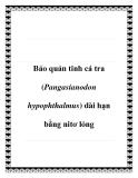 Bảo quản tinh cá tra (Pangasianodon hypophthalmus) dài hạn bằng nitơ lỏng