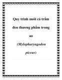 Quy trình nuôi cá trắm đen thương phẩm trong ao (Mylopharyngodon piceus)