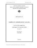 Luận văn nghiên cứu chế biến rượu vang dừa