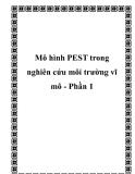 Mô hình PEST trong nghiên cứu môi trường vĩ mô - Phần 1