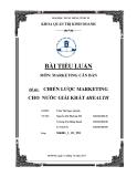 Tiểu luận:Chiến lược Marketing cho nước giải khát 4HEALTH