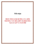 Tiểu luận: PHÂN TÍCH ẢNH HƯỞNG CỦA MÔI TRƯỜNG VĂN HÓA ĐẾN MARKETING TẠI AI CẬP VÀ NAM PHI