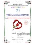 Tiểu luận Marketing: Lập kế hoạch Marketing cho công ty dịch vụ quà tặng 2B