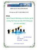 Tiểu luận: Lập kế hoạch Marketing cho Beeline tại thị trường Việt Nam vào năm 2011 thông qua gói cước mới Big2