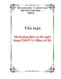 Tiểu luận: Marketing dịch vụ thẻ ngân hàng TMCP Á CHâu (ACB)